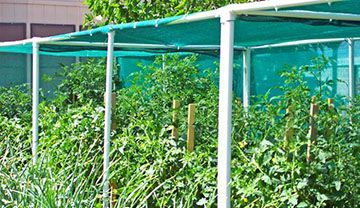Horticultural_Shade_Cloth.jpg
